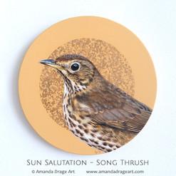 Song Thrush Painting