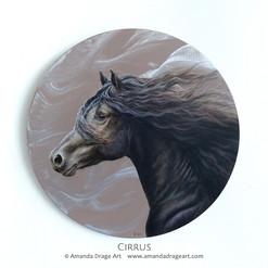 """""""Cirrus"""""""