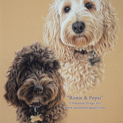 Blonde and Chocolate Cockapoos Pastel Portrait