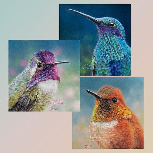Set of Three Hummingbird Mini Prints
