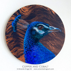 """Copper and Cobalt"" Peacock Painting"