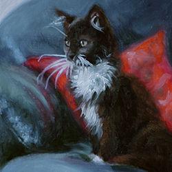 Kitten painted in oils by Amanda Drage Art
