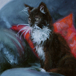 Kitten painted in oils by Amanda Drage Art