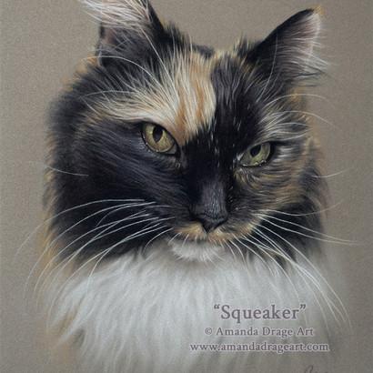 Tortoiseshell Cat Pastel Portrait