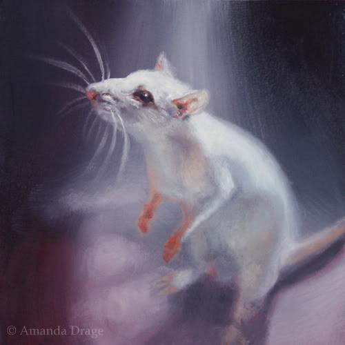 White Rat Oil Painting