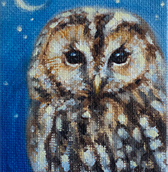Tawny Owl Miniature Oil Painting