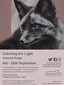 Poster for Catching The Light exhibition by Amanda Drage Art