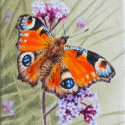 Peacock Butterfly Painting