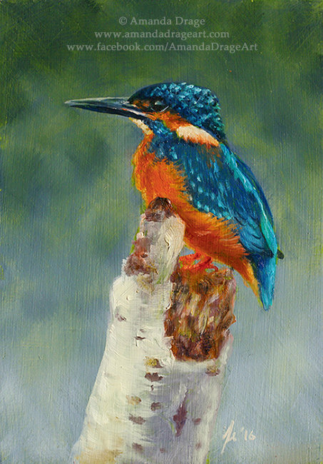 """River Jewel"" - Kingfisher Print"