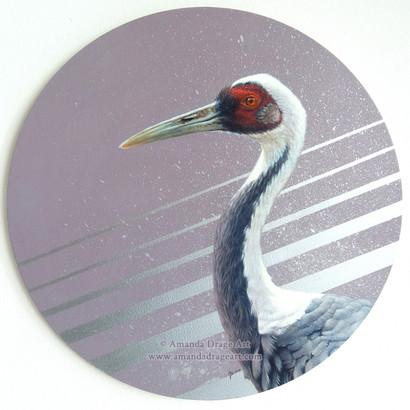 White Naped Crane Painting