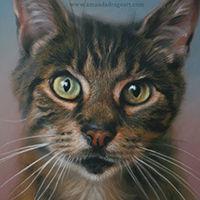 Portrait of a Tabby cat by Amanda Drage Art