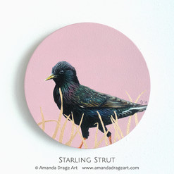 Starling Painting