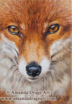 Fox Miniature Painting