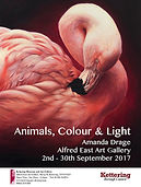 Poster for Animals Colour & Light exhibition