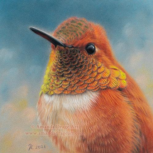 """Rufous Hummingbird"" Limited Edition Mini Print"