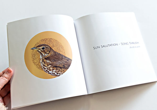 Inside the Catching The Light catalogue by Amanda Drage Art
