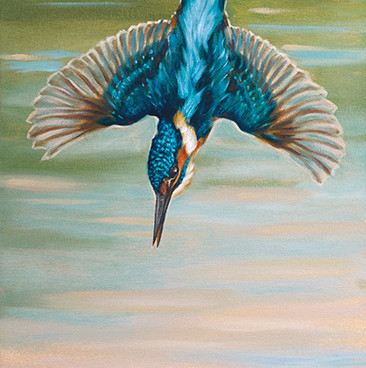 Diving Kingfisher Oil Painting