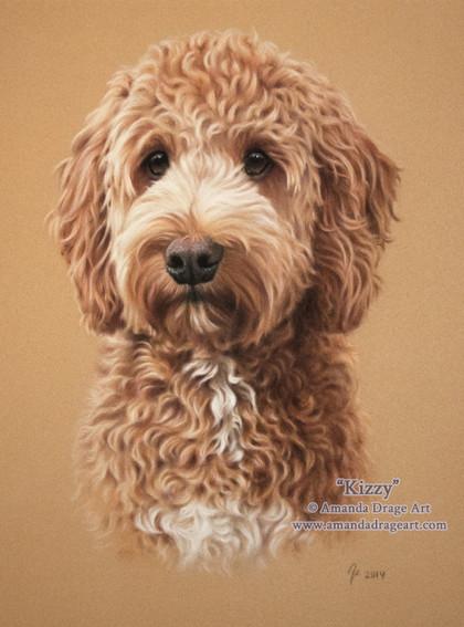 Cockapoo Pastel Portrait