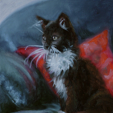 Black and White Kitten Oil Painting