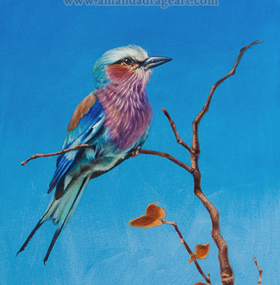 Lilac Breasted Roller Painting