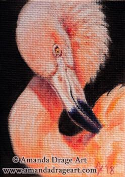 Flamingo Miniature Oil Painting