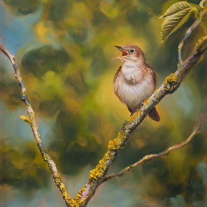 Nightingale Oil Painting