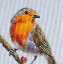 Robin Miniature Oil Painting