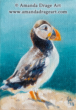 Puffin Miniature Oil Painting