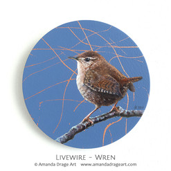 """Livewire"" Wren Painting"