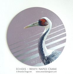 """Echoes"" White Naped Crane Painting"