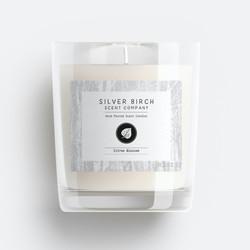 The Silver Birch Scent Company