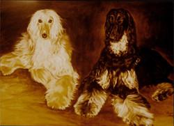 Afghan+Dogs.jpg
