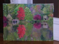 Landscape Red Tree on Water.JPG