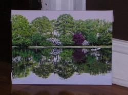 Landscape Heron on Water.JPG