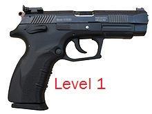 Level 1 Pistol