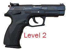 Level 2 Pistol