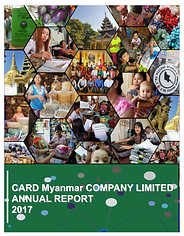 Annual report 2017Thumb.png