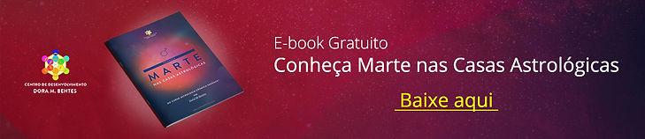 e-book banner.jpg