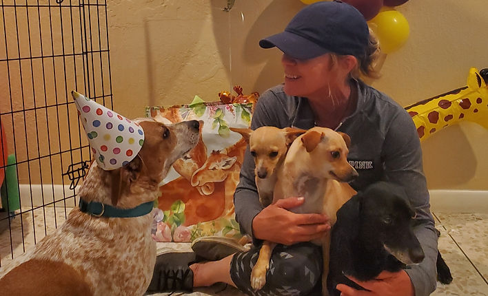 Having fun with the dogs at Obie's 1st birthday party!