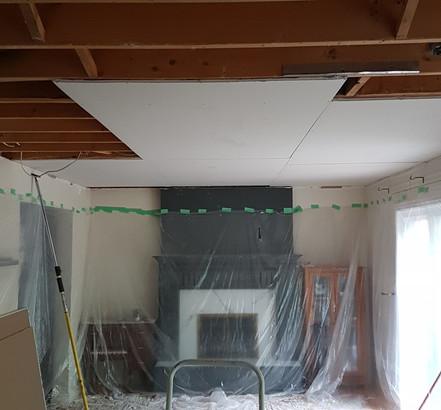 Ceiling Refinish