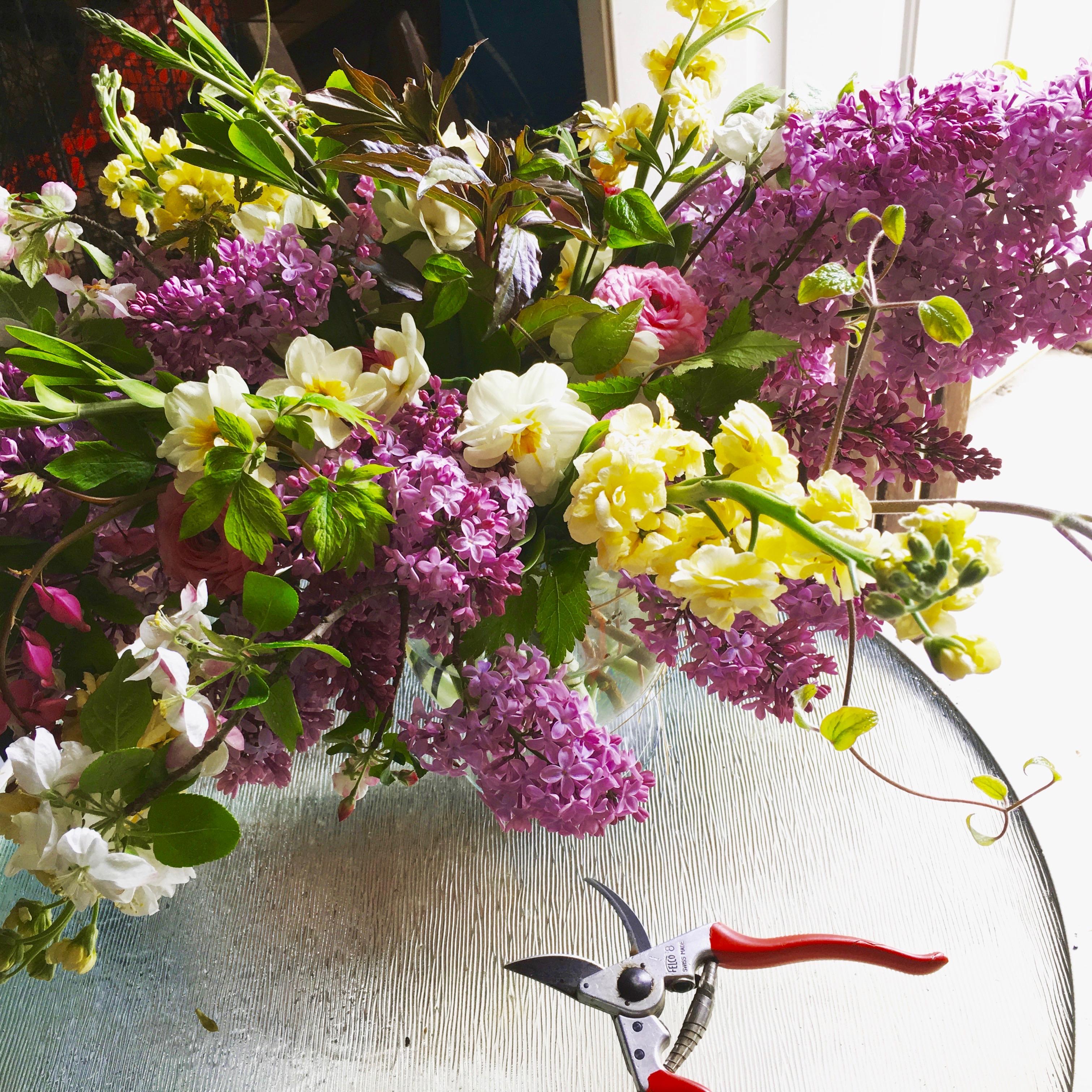 lilacs & daffodils