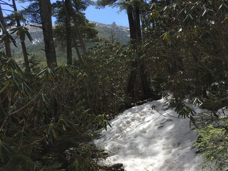 4月12日の積雪状況