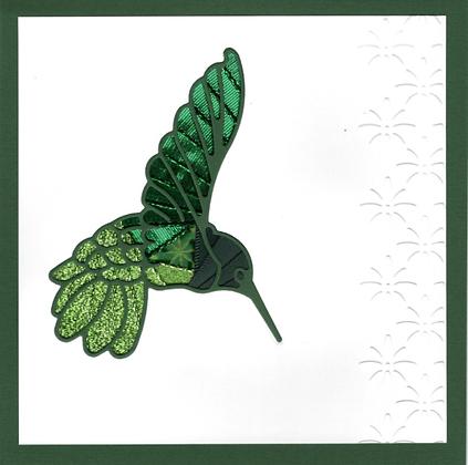 Hummingbird Hover