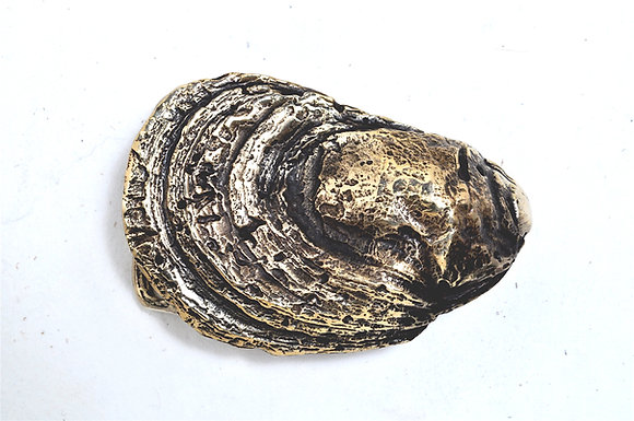 OYSTER - No. 55