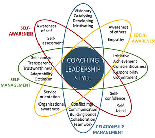 Leadership%20emotional_edited.jpg