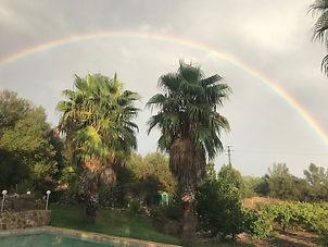Regenbogen Bild IMG_4321.jpg
