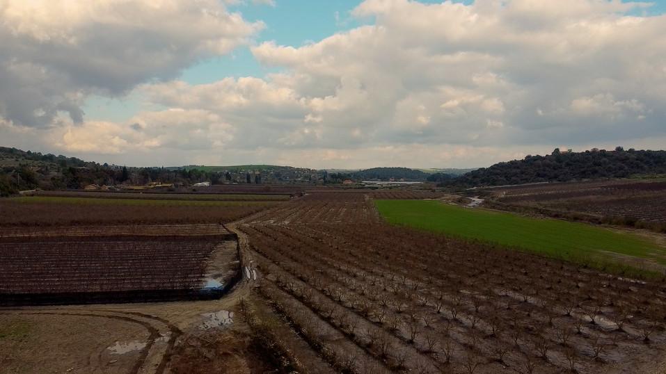 Drone Amikam 090.jpg