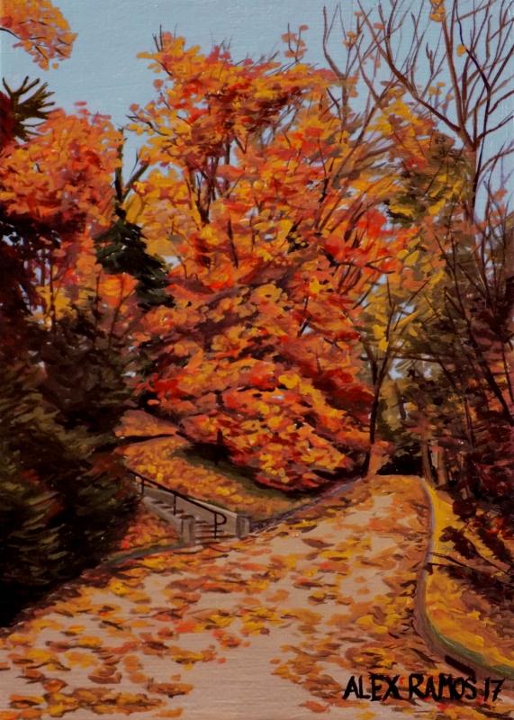 Autumn in West Laurel Hill