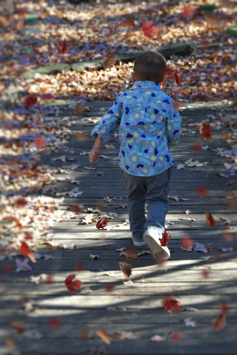 Malcom Running in Leaves by Tammy Klepac.jpg