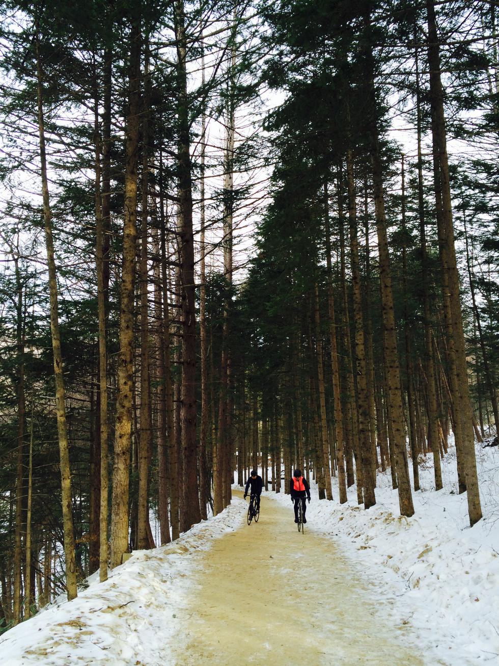 Winter Fever In East